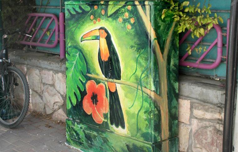 ציפור מיסטורי על הרקע ירוק ופרח ציורים על ארונות חשמל