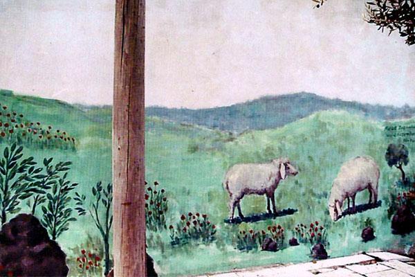ציורי קיר של כבשים במושב