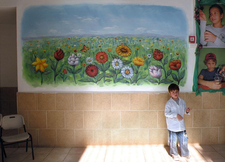 ציורי קיר שדה פרחים