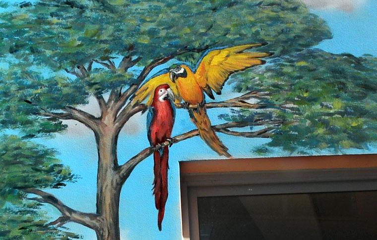ציורי קיר תוכים על העץ